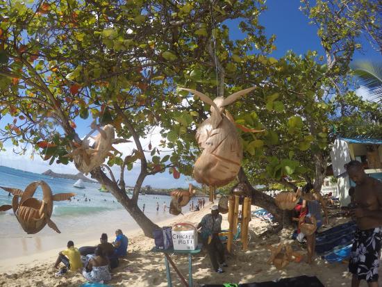 Rodney Bay: Plage de la baie le long des hôtels, camelots sur la plage et sur l'eau