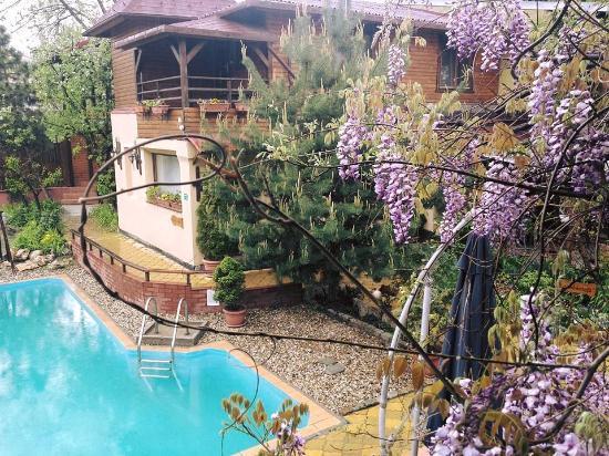 Pension Casa Mica: Spring at Casa Mica