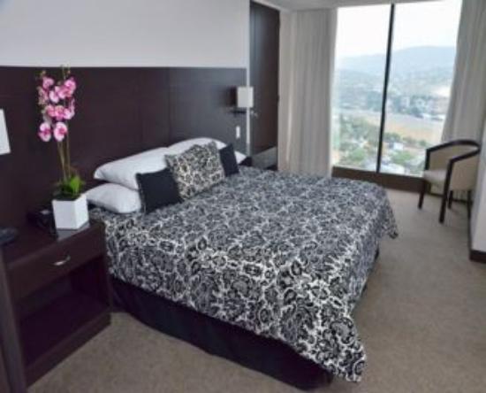 Hotel Chacao & Suites: Suite PH