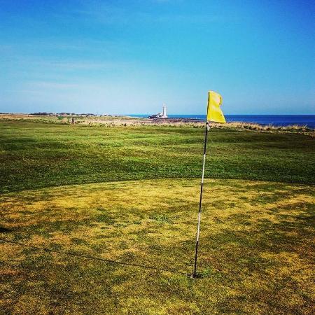 Мини-гольф