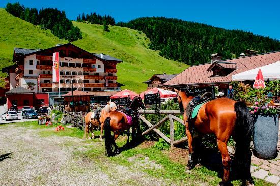 Altenmarkt im Pongau, Østrig: Speisenfoto