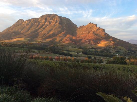بينيلوبيز جست هاوس: Stellenbosch mountain and vineyard view...on of the many to see within 10 minutes reach.