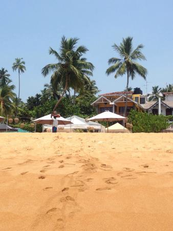 Thaproban Beach House: photo0.jpg