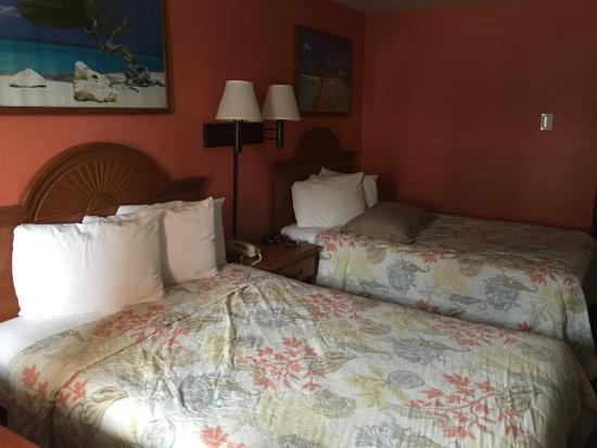 nice room they have pet rooms so you can bring your furry friends rh tripadvisor com