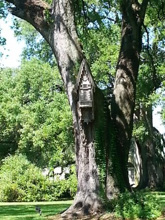 Darrow, LA: Unusual birdhouses pepper the front lawn.