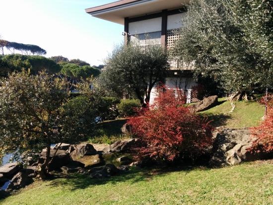 Ponticello sul laghetto foto di giardino giapponese - Piccolo giardino giapponese ...