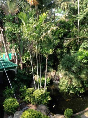 Avalone Guest House: View from our bedroom