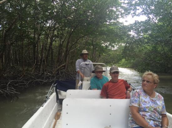Chokoloskee, FL: A closer look at the mangroves.