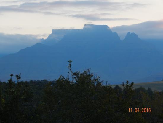 Винтертон, Южная Африка: Cathkin Peak from hotel