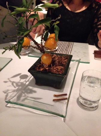 Bonsai de kinkan - Foto de Restaurante Oro, Rio de Janeiro