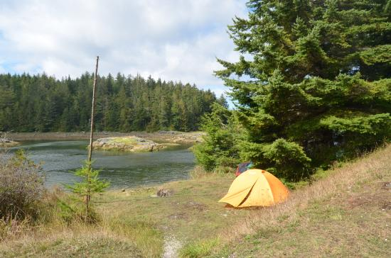 Port McNeill, แคนาดา: camping place