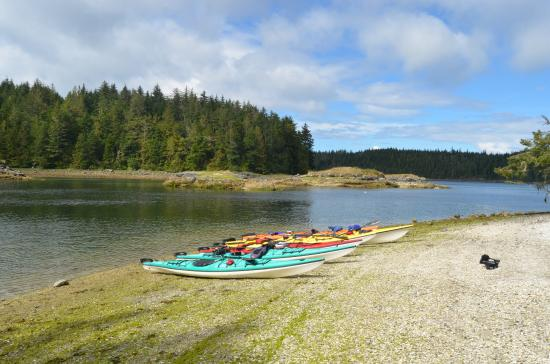 Port McNeil, Canada: day 3