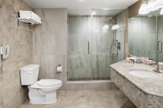 Bathroom Fixtures Laval Qc suite junior bathroom - picture of sheraton laval hotel, laval