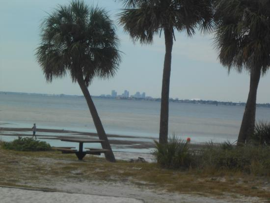 Picnic Island Park: St. Pete in the distance across the Bay