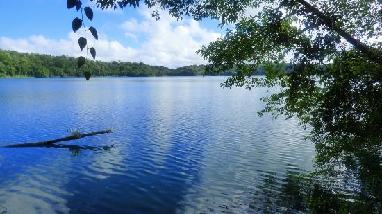 Yungaburra, Australia: Lake Barrine viewed along the circuit walking track