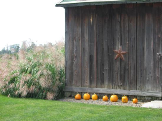 Punxsutawney, Pensilvanya: Jackson Run Barn