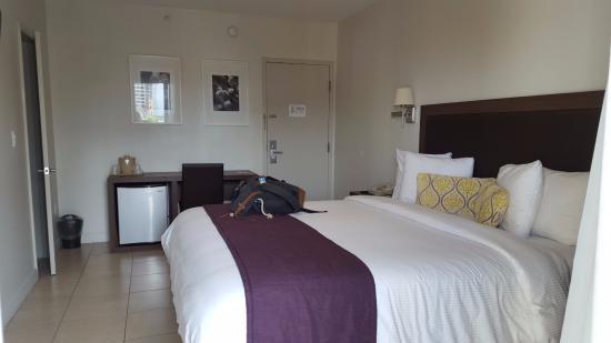 Collins Hotel : habitacion con frigobar