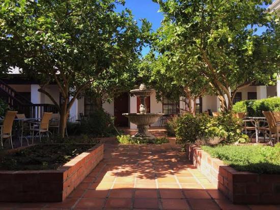 De Noordhoek Lifestyle Hotel: Lemon Tree