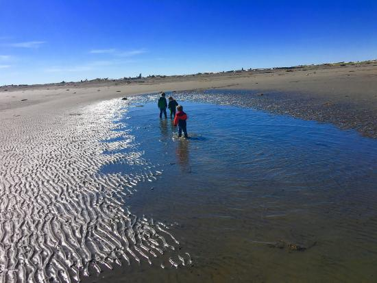 Ocean Shores, WA: Beautiful place to explore, build sand castles, and make memories.
