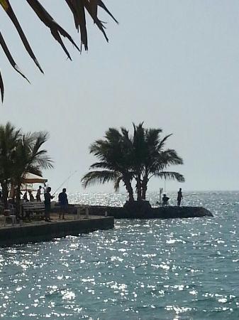 Silver Sands Beach: IMG-20160409-WA0026_large.jpg