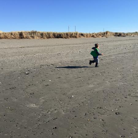 Ocean Shores, WA: Rocks to climb, driftwood to explore, misty mornings to enjoy, and barely anyone else in sight!