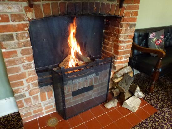 Wolterton, UK: One of several fireplaces in the property