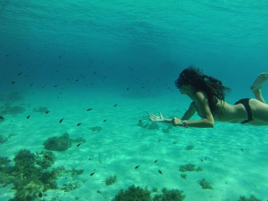 Vitamin Sea Watersports