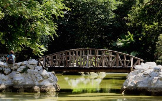 Attica, Yunanistan: Ethnikos Kipos-National Garden