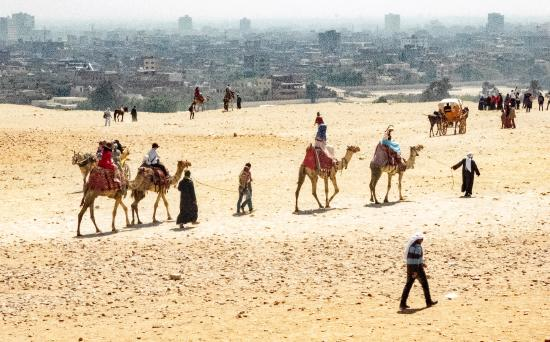 Ramasside Tours: Camels at Pyramids with Smoggy Cairo