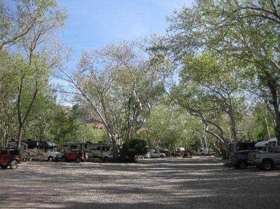 Rancho Sedona RV Park: Gravel base, tons of mature trees, creek in back.