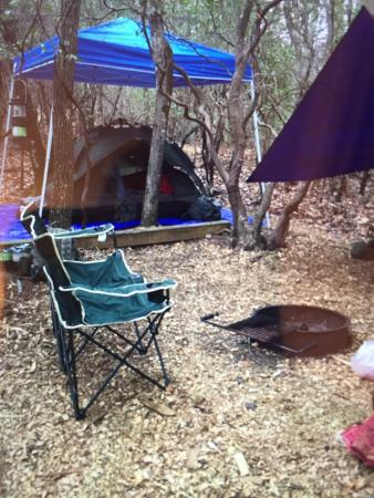 Ash Grove Mountain Cabins & Camping: The best tent camping EVER