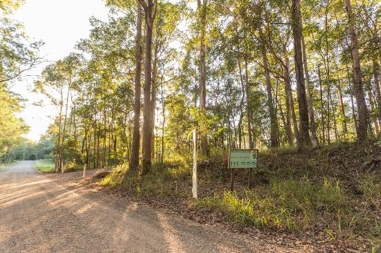 Ringtail Creek, Australia: Entrance to property