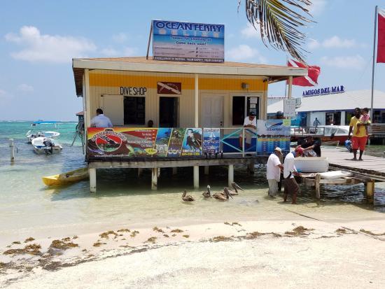 Conch Shell Inn Bild
