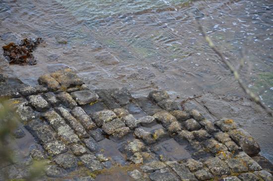 Tasmania, Australia: Tessellated pavement