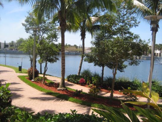 hilton garden inn palm beach gardens the view from the pool - Hilton Garden Inn Palm Beach Gardens