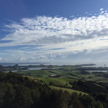 Taiharuru, Nueva Zelanda: Take short walk up the hill to this amazing view.