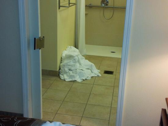 Staybridge Suites Lafayette-Airport: piles of (used) towels...