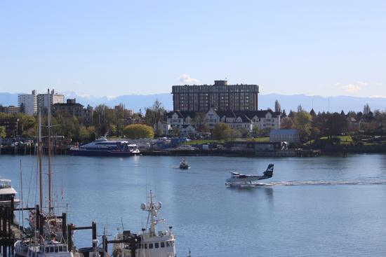 Seaplane, water taxi, and Victoria Clipper were all active
