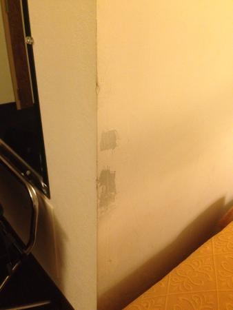 Quality Inn & Suites Albany Airport: photo2.jpg