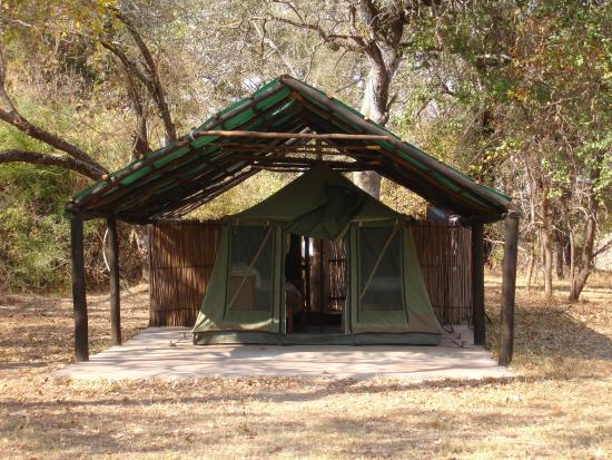 Hippo Lodge: Tents