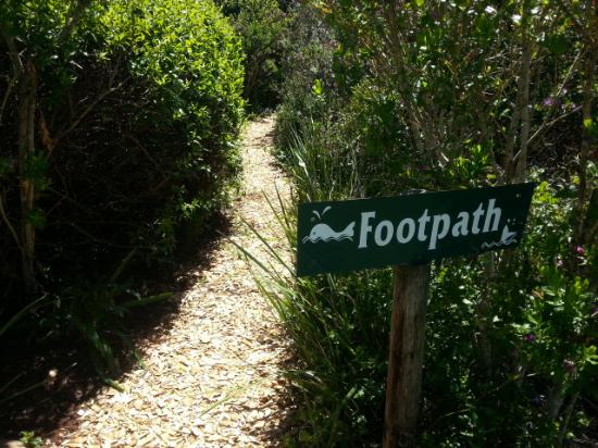 Hilltop Country Lodge: Private footpath on the property