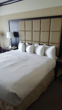 Hotel Bonaventure Montreal: 20160413_114332_large.jpg