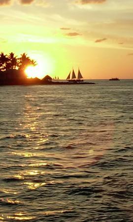 Key West Harbor Inn: Sunset sail