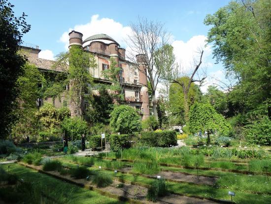 Milano l orto botanico di città studi aperto nel weekend grazie
