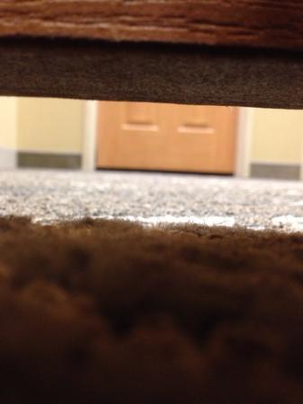 إكسبريس واي سويتس بسمارك: The gap under the door was large enough to take a clear photo of the hallway.