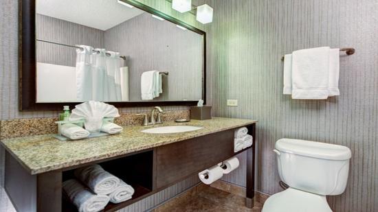 Riverwoods, IL: Guest Bathroom with New Elegant Vanity
