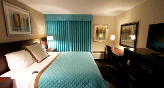 Wyndham Garden Midland: Guest Room 2