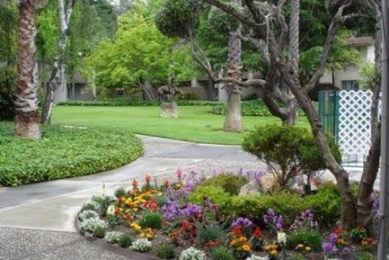 Los Gatos, Kalifornien: Grounds