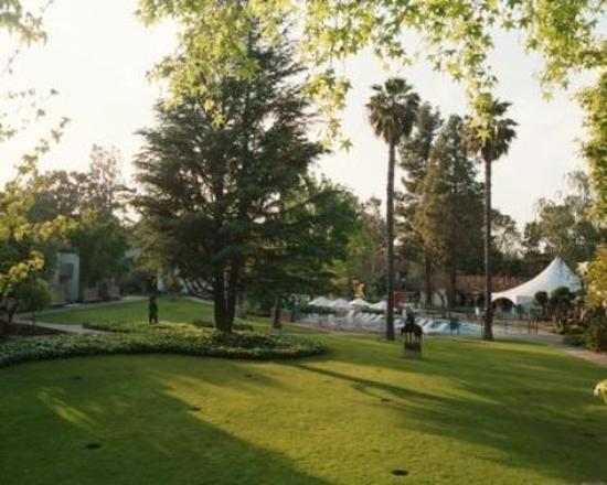 Los Gatos, Kalifornien: QWLOSG