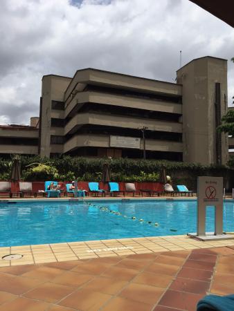 Clean, fresh pool area